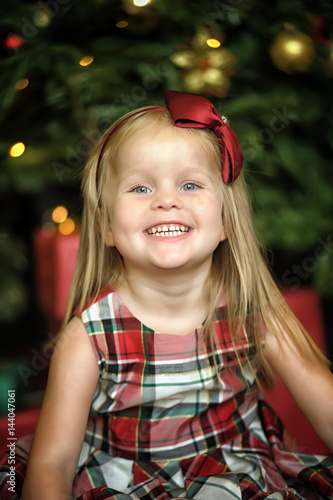 Poster Girl in plaid dress near the Christmas tree