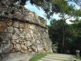 Muralha de Pedra do Forte de São José da Ponta Grossa