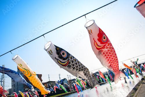 北越の小京都 新潟県加茂市 加茂川の鯉のぼり Poster