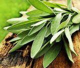 Fresh aromatic sage on old wooden background - 144090002