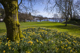 Lake Windermere at Spring