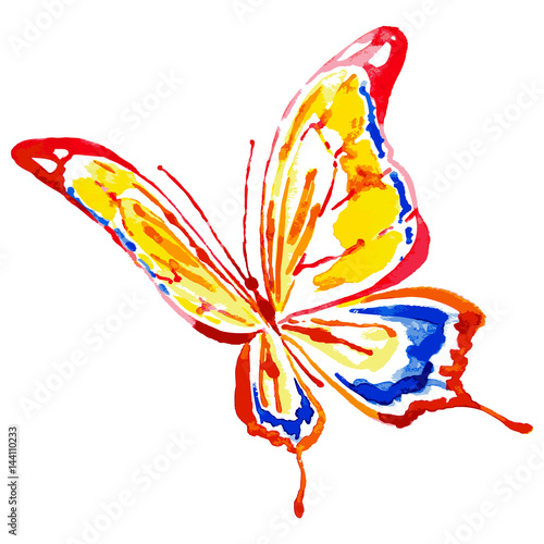 Fototapeta red butterfly,watercolor,isolated on a white