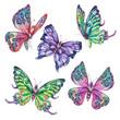 Watercolor set of vintage colorful butterflies