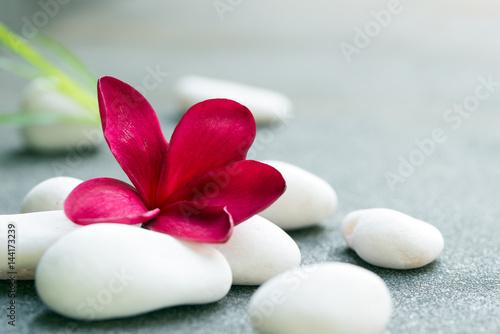 Spa stones concept