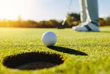 Fototapety Professional golfer putting ball
