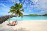 Fototapety Urlaubsreisen, Strandidylle mit Hängematte
