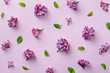Floral pattern on the purple background. Flat lay flowers. Top view - 144220845