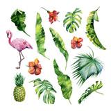 Watercolor illustrat...
