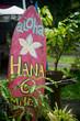 Aloha Road to Hana