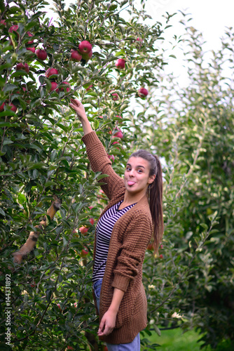 Poster beautifull casual girl picking apple in an orchard
