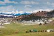 Northern Colorado High Country