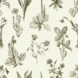 pattern of the sketches wildflowers