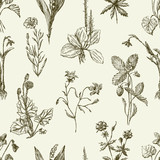 pattern of the sketches wildflowers - 144359001