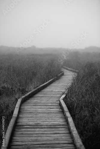 Wooden Path in the Fog - 144391672