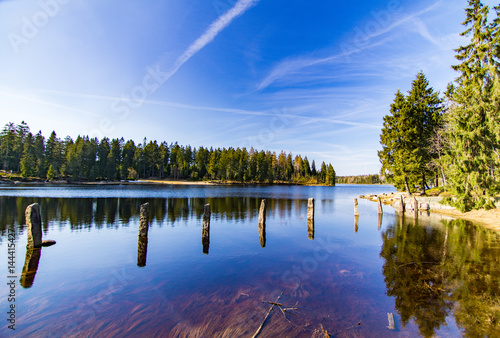 Oderteich mit blauen Himmel Wasser und Bäumen im Harz - 144415427
