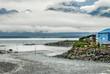 Salmon spawning in Alaska at Valdez