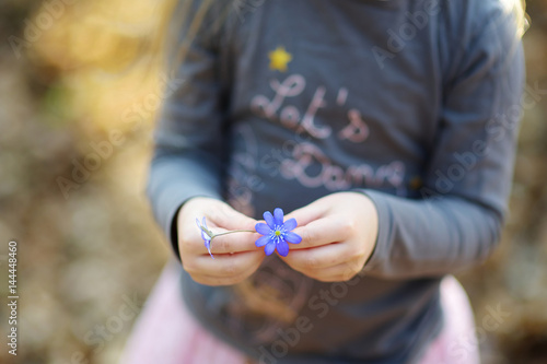 Adorable little girl picking the first flowers of spring in the woods on beautif Poster