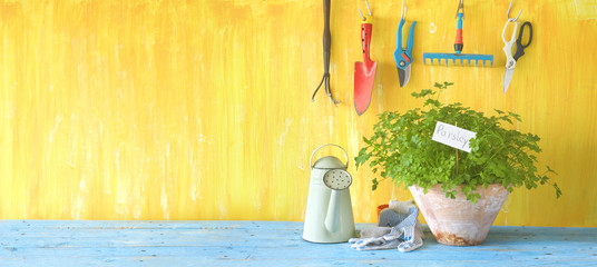 Gardening tools and parsley. Panorama format, good copy space. © Thomas Bethge