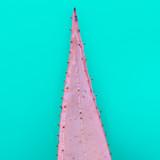 Aloe leaf Minimal fashion art gallery - 144465881