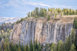 sandstone cliff and spruce in Colorado