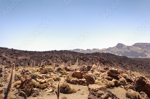 Paisaje desértico del volcán del Teide en Tenerife Poster