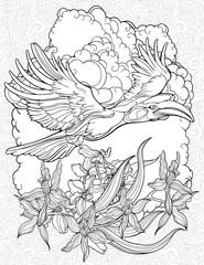 coloring page with flying hornbill