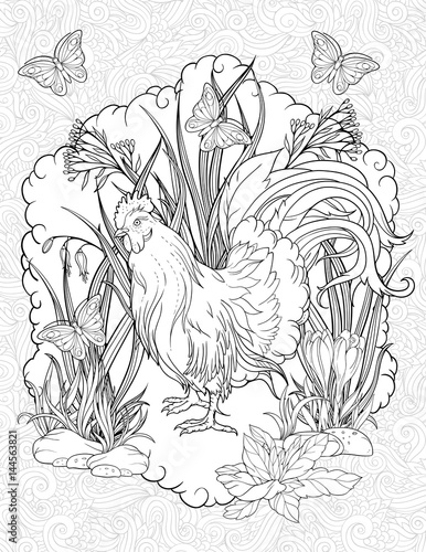 butterflies and standing rooster