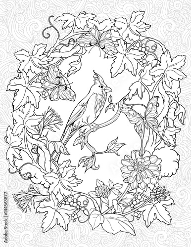 coloring page with butterflies and a small bird