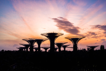 Beautiful sunrise at Gardens by the Bay in Singapore