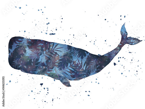 Whale watercolor. Vector illustration