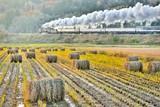 田園の風景を走る・ローカル線の旅