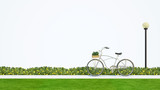 bicycle in park and white background - 3d rendering