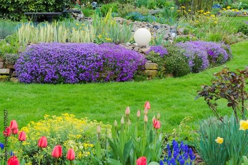 Blaukissen im Garten