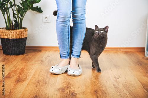 Poster Süßes Kätzchen mit Frauchen