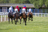 Race horses and jockeys during a race - 144756486