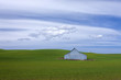 Metal barn on the Palouse.