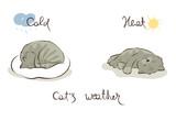 Sleeping cat / Vector illustration, weather forecast using cat