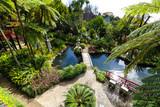 Fototapety Tropischer Garten Monte Palace, Madeira