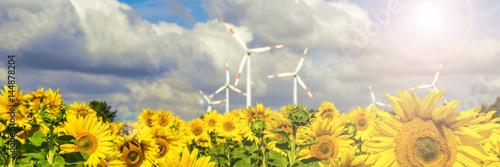 Sonnenblumen und Windkraftanlagen bei strahlendem Sonnenschein