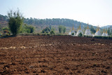 Ploughed land and pagoda