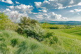 stunning landscape of green hills of the Val d'Orcia in Tuscany, the land of wine brunello of the city of Siena and Montalcino