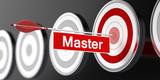 Master / Target / 3d / Arrow - 144940244
