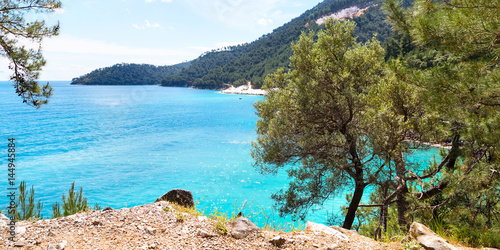 Summer vacation panoramic background with turquoise sea water bay and pine trees, Greece