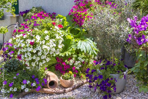 Plakat Blumenpracht im Kiesbeet