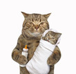 The cute cat is holding his baby in the one paw and a bottle of milk in other one. White background.