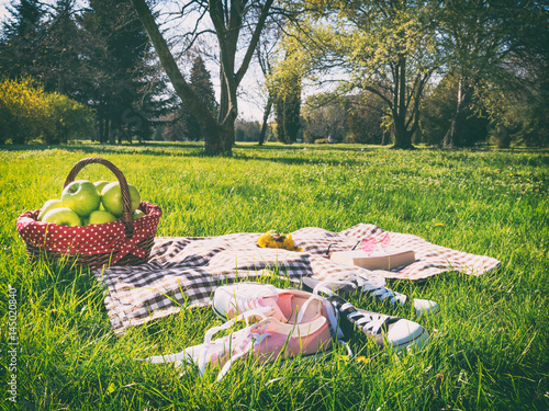 picnic basket and blanket - 145020840