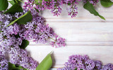 Fresh lilac flowers on a wooden table - 145043209