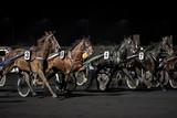 course de chevaux - 145045057