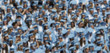 Unrecognizable blurred focus graduates in light blue caps and gowns background