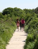 groupe de joggeuses sur un sentier en forêt